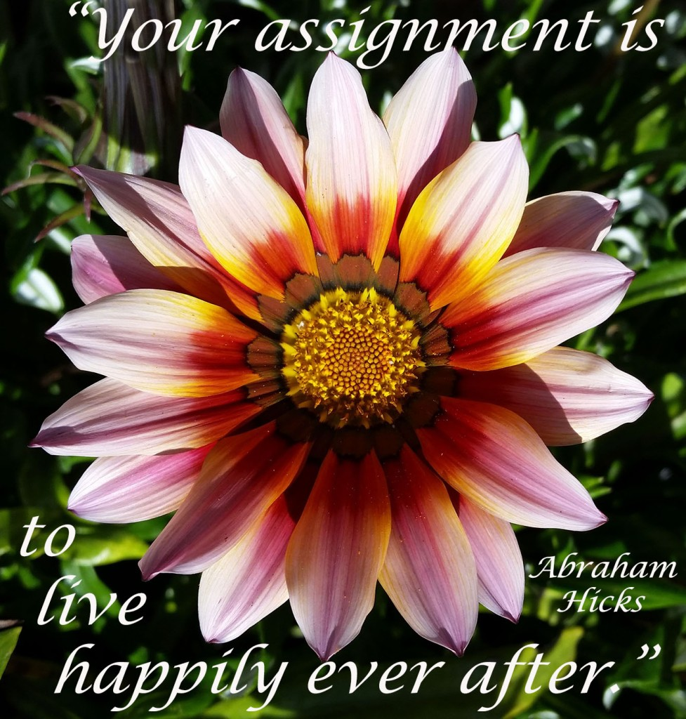 """Your assignment is to live happily ever after."""