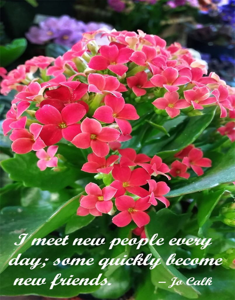 I meet new people every day; some quickly become new friends.