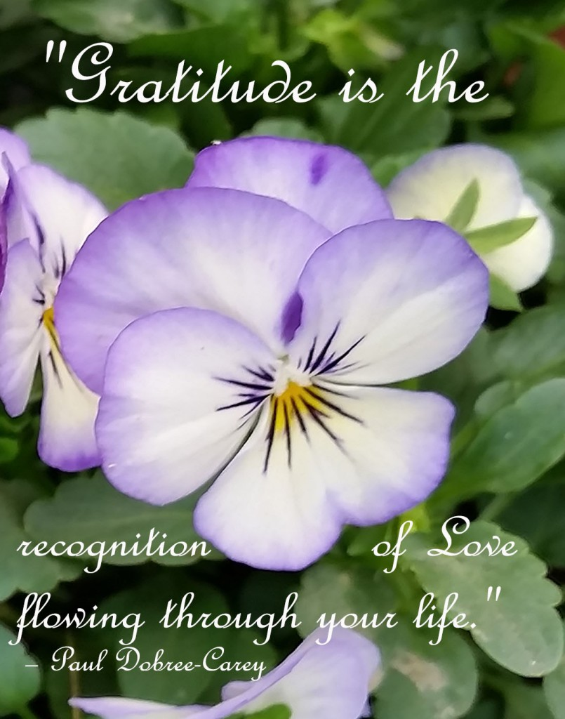 """Gratitude is the recognition of Love flowing through your life."""