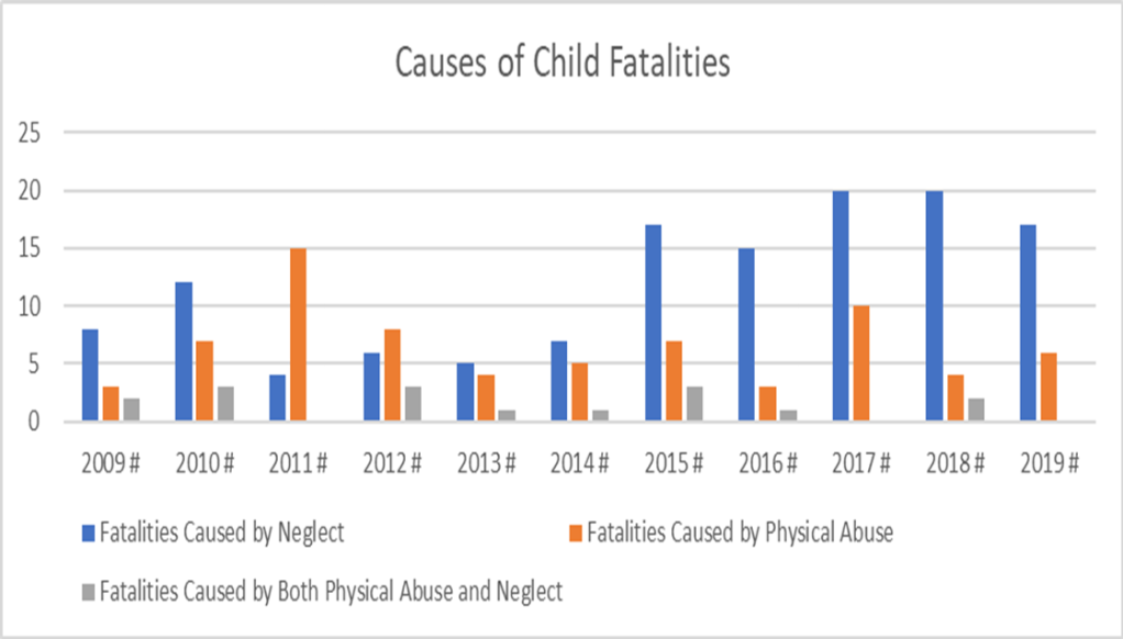 Causes of Child Fatalities Chart